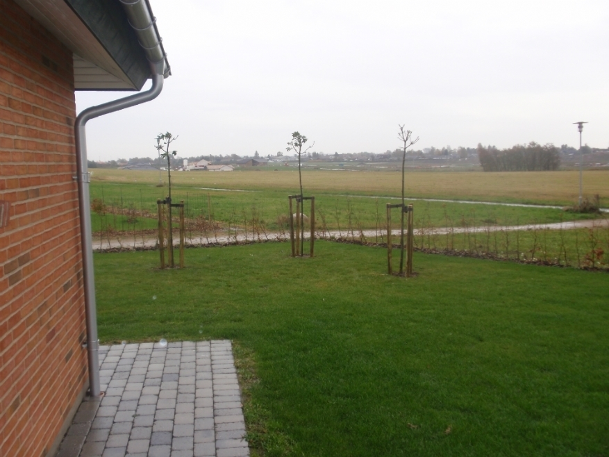 Plantning af alt fra små buske til store træer i Horsens - Anlægsgartner Kent Køhler ApS